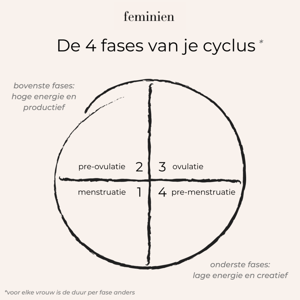 Vier Fases van Cycle | Feminien